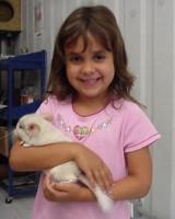 Chinchilla Kids Club-Chinchilla Fact & Basic Care
